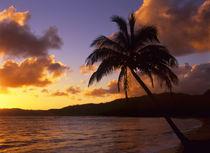 Kauai Sunrise 2 by Danita Delimont