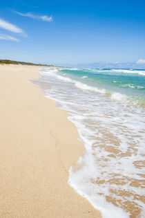 Polihale beach Polihale State Park, Kauai, Hawaii. by Danita Delimont