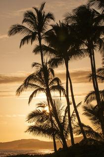 Sunset at Poipu beach, Kauai, Hawaii. by Danita Delimont