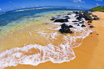 Larsen's Beach, North Shore, Island of Kauai, Hawaii von Danita Delimont