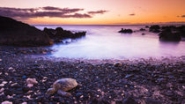 Hawaiian green sea turtles on a lava beach at sunset, Kohala... von Danita Delimont