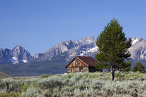 Idaho, Sawtooth National Recreation Area, Old Barn and the S... by Danita Delimont
