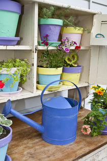 Potting bench with containers and flowers in spring, Marion ... by Danita Delimont