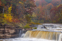 Lower Cataract Falls on Mill Creek in autumn at Lieber State... von Danita Delimont