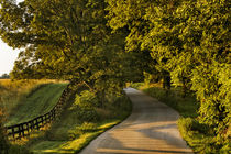 Rural road and fence at sunrise, Oldham County, Kentucky von Danita Delimont