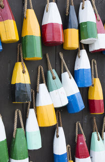 Bar Harbor, Maine, colorful buoys on wall for sale and state... by Danita Delimont