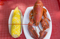 Bar Harbor, Maine, traditional lobster dinner with corn spec... von Danita Delimont