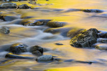 Nash Stream in Reddington Township, Maine by Danita Delimont