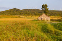 An old farm building in a field next to the Mars Hill wind f... by Danita Delimont