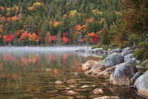 USA, Maine, Acadia National Park, Fall reflections with fog ... by Danita Delimont