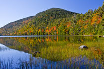 Autumn reflections, Bubble Pond, Acadia National Park, Maine, USA von Danita Delimont