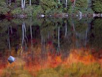 Acadia National Park, Maine von Danita Delimont
