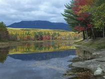 Mount Katahdin from Abel Creek in autumn, Baxter State Park, Maine von Danita Delimont