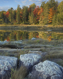Thomas Bay in autumn, Desert Island, Maine by Danita Delimont