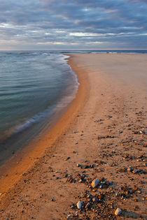 Head of the Meadow Beach, Cape Cod National Seashore, Truro,... by Danita Delimont