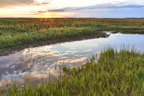 Sunset over the tidal marsh at the Massachusetts Audubon Wel... von Danita Delimont