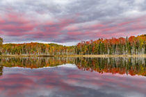 Red Jack Lake and sunrise reflection, Alger County, Upper Pe... by Danita Delimont