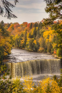 North America, USA, Upper Peninsula of Michigan, Paradise, T... by Danita Delimont