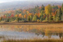 Pond and fall color Alger County Upper Peninsula, Michigan von Danita Delimont