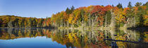 Fall Color at small lake or pond Alger county in the Upper P... by Danita Delimont