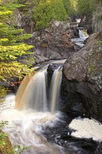 Cascade River Stte Park by Danita Delimont