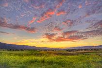 USA, Montana, Missoula by Danita Delimont