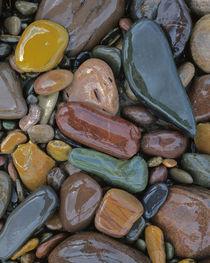 USA, Montana, Clark Fork River, Stones by Danita Delimont