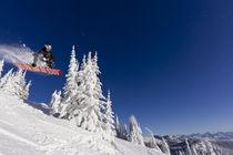 Ski 2012 von Danita Delimont