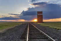 Railroad tracks lead to sunset and old wooden granary in Col... von Danita Delimont