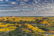 Ft Peck Badlands by Danita Delimont