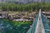 Swing bridge over the Kootenai River near Libby, Montana, USA by Danita Delimont