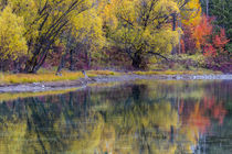 Autumn colors reflect into the Whitefish River in Whitefish,... by Danita Delimont