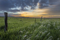 Brilliant sunrise over ranchlands near Ekalaka, Montana, USA by Danita Delimont