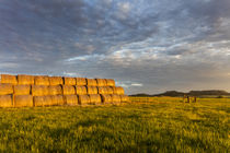 Hay bales and Chalk Buttes receive beautiful morning light n... by Danita Delimont