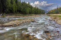 Doris Creek von Danita Delimont