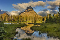 Sinopah Mountain reflects in beaver pond in Two Medicine Val... by Danita Delimont