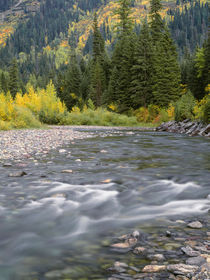 USA, Montana, Glacier National Park, McDonald Creek with fal... by Danita Delimont