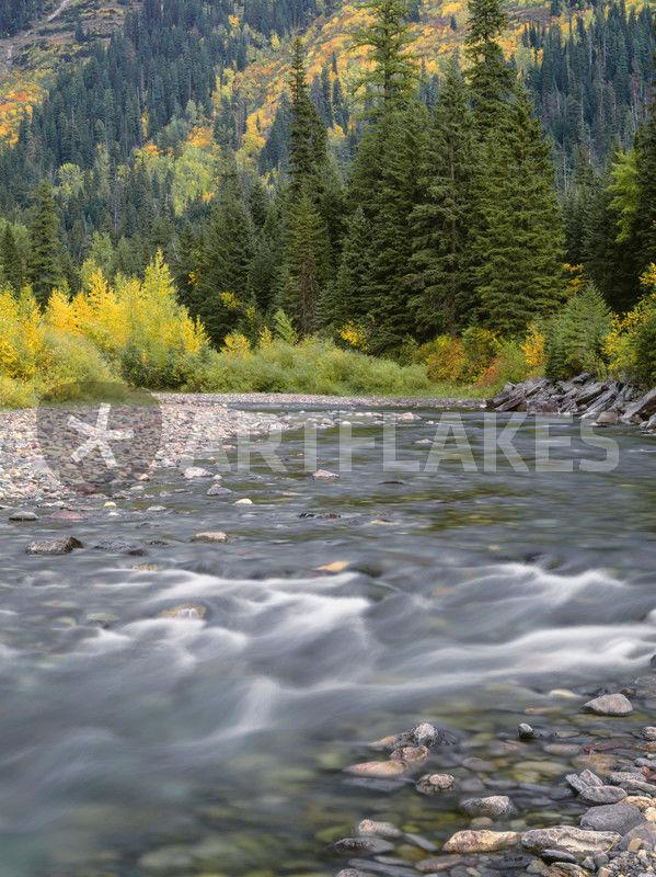 usa montana glacier national park mcdonald creek with. Black Bedroom Furniture Sets. Home Design Ideas