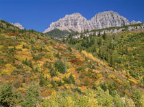 USA, Montana, Glacier National Park, Peaks of the Garden Wal... von Danita Delimont