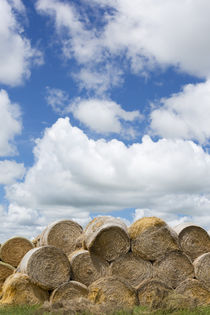 USA, Montana, Garfield County, Big sky country, and hay bales. von Danita Delimont