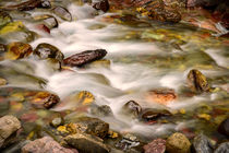 Colorful rocks in a rushing mountain stream von Danita Delimont