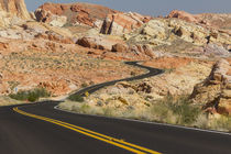 USA, Nevada, Clark County, Valley of Fire State Park by Danita Delimont