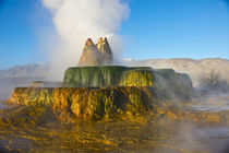 USA, Nevada, Black Rock Desert, Fly Geyser, Erupting by Danita Delimont