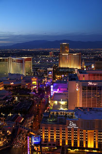 Casinos and hotels along The Strip, seen from Eiffel Tower r... by Danita Delimont