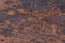 Petroglyphs, Petroglyph Canyon, Valley of Fire State Park, Nevada, USA von Danita Delimont