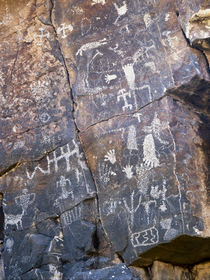 USA. Petroglyphs on limestone. Arrow Canyon, Arrow Canyon Ra... by Danita Delimont