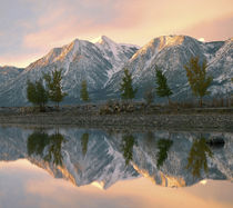 Snowy Carson Range reflected in Carson River, Nevada, USA by Danita Delimont