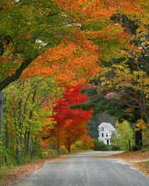 USA, New England, New Hampshire, Andover by Danita Delimont