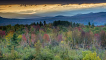 Fall colors in the White Mountains, New Hampshire von Danita Delimont
