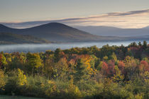Fall colors in the White Mountains, New Hampshire by Danita Delimont